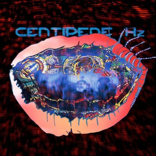 Cover ANIMAL COLLECTIVE, centipede hz
