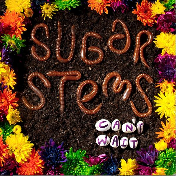SUGAR STEMS, can´t wait cover