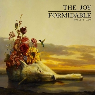 Cover JOY FORMIDABLE, wolf´s law