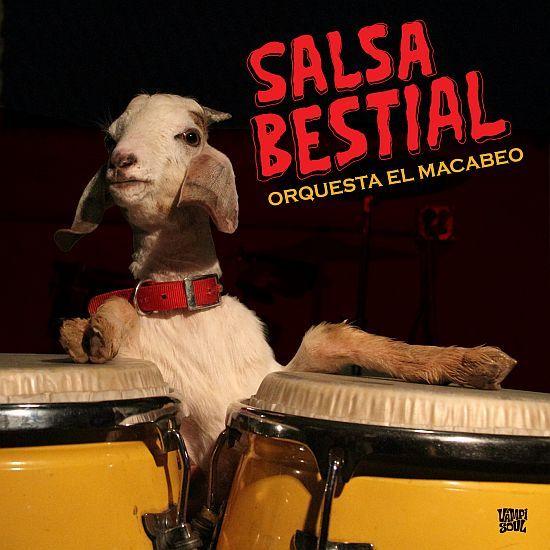 ORQUESTA EL MACABEO, salsa bestial cover