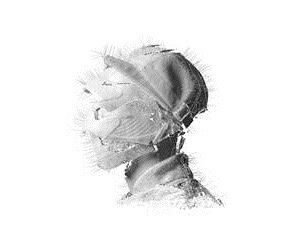 WOODKID, the golden age cover
