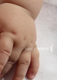 Cover HRVST, youth