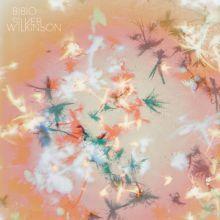BIBIO, silver wilkinson cover