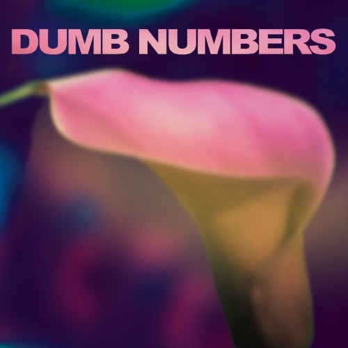 Cover DUMB NUMBERS, s/t