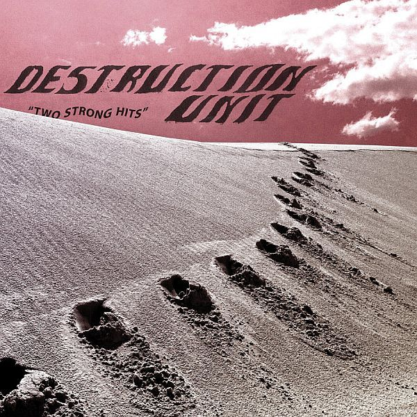 DESTRUCTION UNIT, two strong hits cover