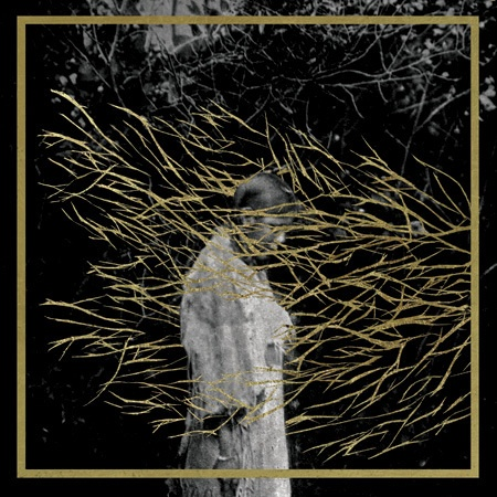FOREST SWORDS, engravings cover