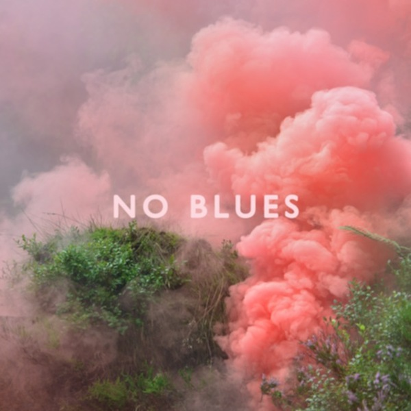 Cover LOS CAMPESINOS, no blues