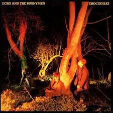 Cover ECHO & BUNNYMEN, crocodiles