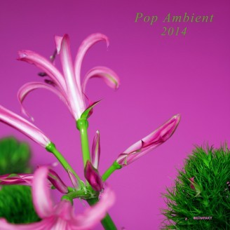 Cover V/A, pop ambient 2014