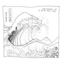 Cover COURTNEY BARNETT, a sea of split peas