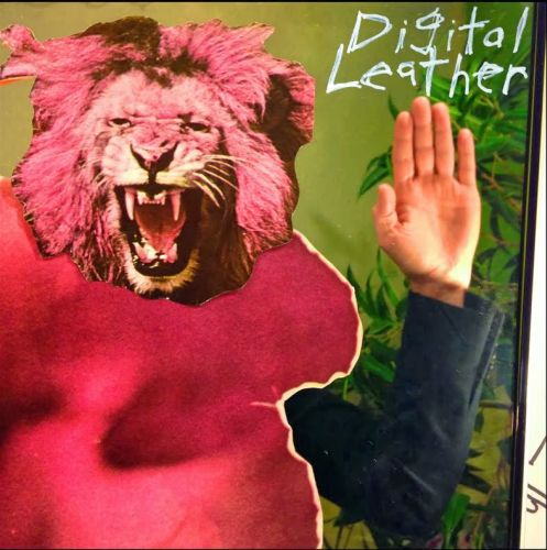 DIGITAL LEATHER / HUSSY, split cover