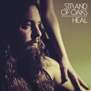 Cover STRAND OF OAKS, heal