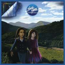 Cover ELECTRIC YOUTH, innerworld