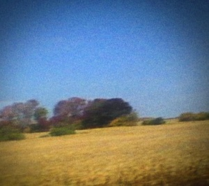 Cover SUN KIL MOON, benji