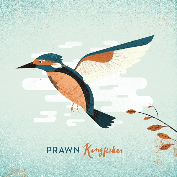 Cover PRAWN, kingfisher