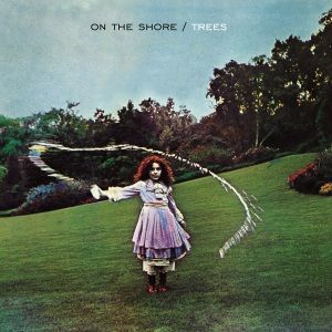 TREES, on the shore cover