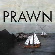 PRAWN, ships cover