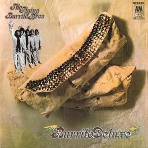 Cover FLYING BURRITO BROTHERS, burrito deluxe