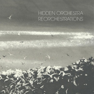 Cover HIDDEN ORCHESTRA, reorchestration