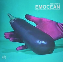 Cover FENSTER, emocean