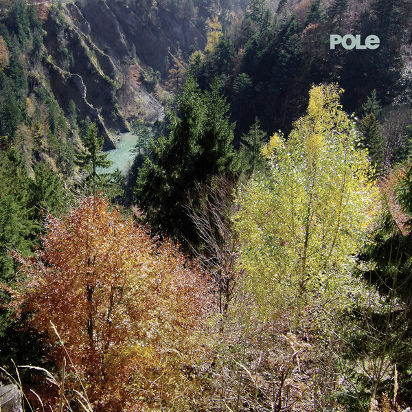Cover POLE, wald