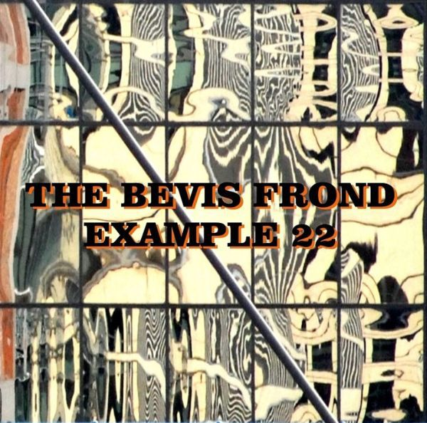 Cover BEVIS FROND, example 22
