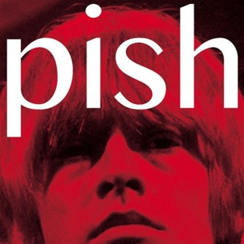 Cover BRIAN JONESTOWN MASSACRE, mini album thingy wingy
