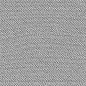 OLAFUR ARNALDS & NILS FRAHM, loon cover