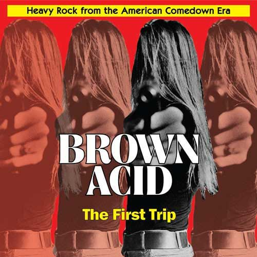 Cover V/A, brown acid: the first trip