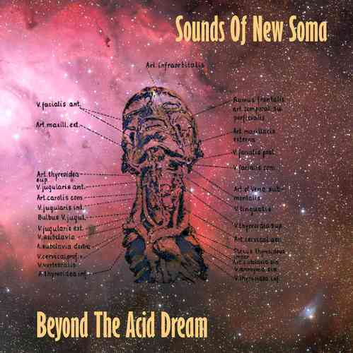 Cover SOUNDS OF NEW SOMA, beyond the acid dream