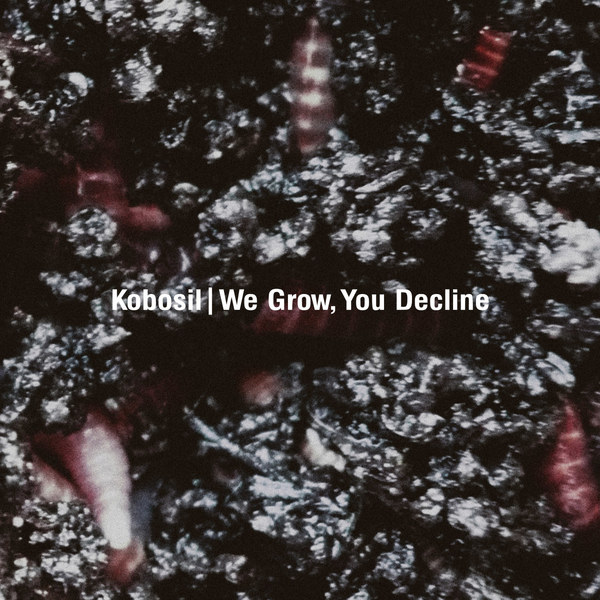Cover KOBOSIL, we grow, you decline
