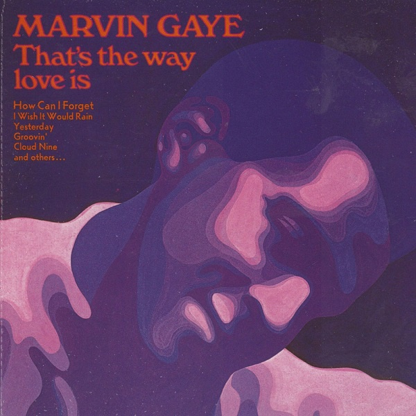 Cover MARVIN GAYE, that´s the way love is