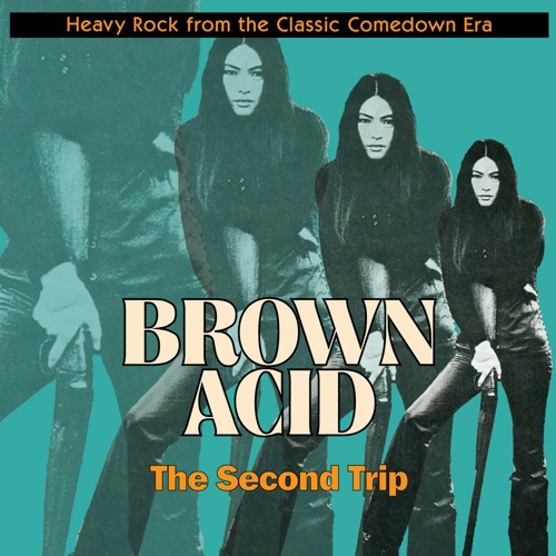 Cover V/A, brown acid: second trip