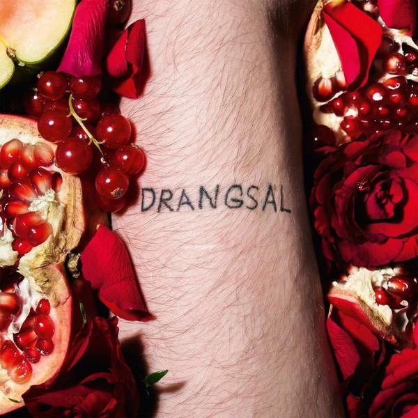 DRANGSAL, harieschaim cover