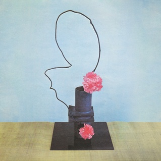 Cover METHYL ETHEL, on inhuman spectacle