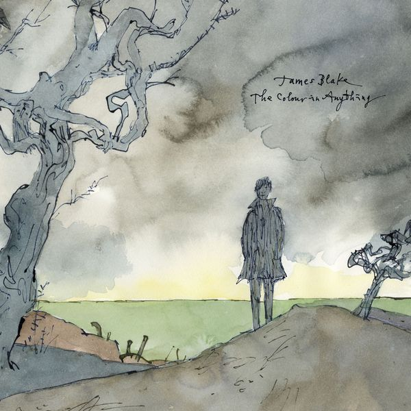 Cover JAMES BLAKE, the colour in anything