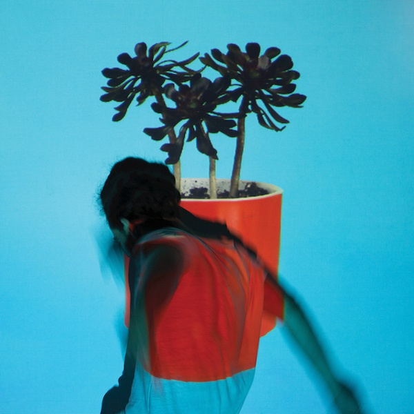 LOCAL NATIVES, sunlit youth cover