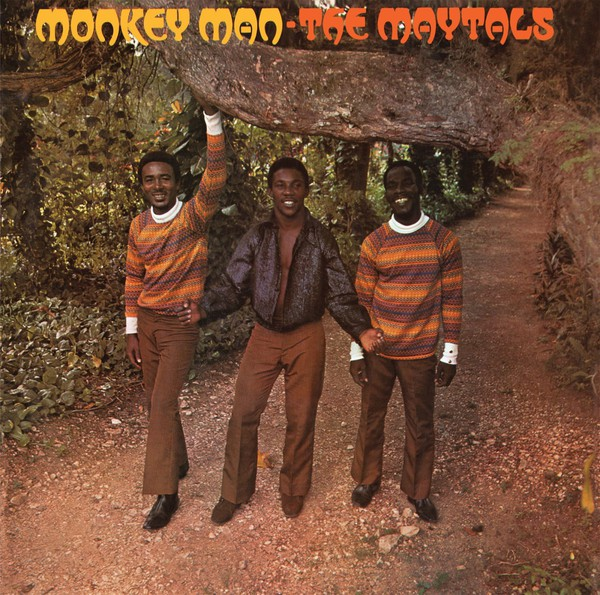 Cover MAYTALS, monkey man