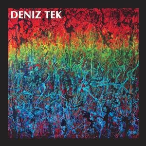 Cover DENIZ TEK, mean old twister