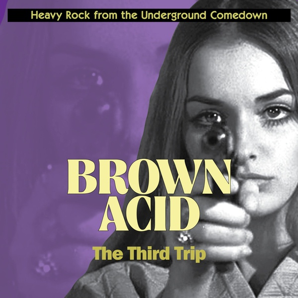 Cover V/A, brown acid: third trip