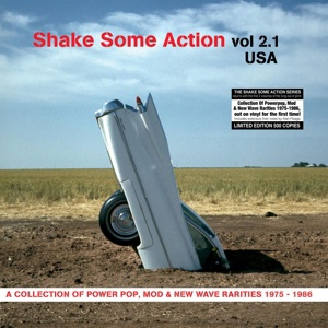 V/A, shake some action vol. 2.1 (us) cover