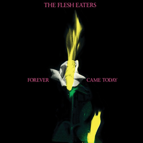 FLESH EATERS, forever came today cover