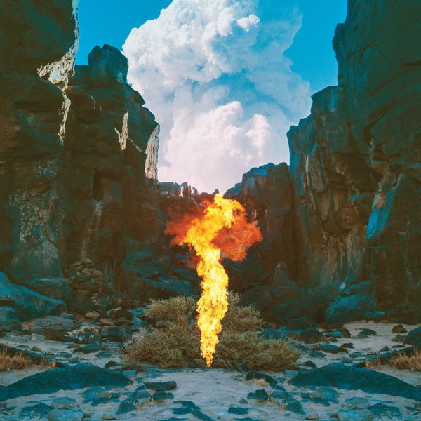 Cover BONOBO, migration