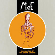 Cover MOE, examination of the eye