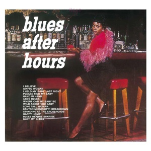 Cover ELMORE JAMES, blues after hours