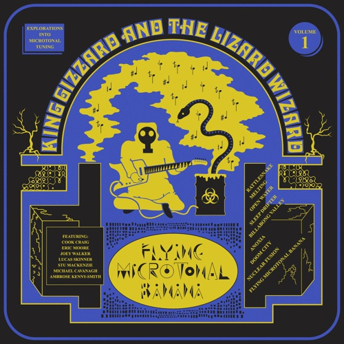 Cover KING GIZZARD & THE LIZARD WIZARD, flying microtonal banana