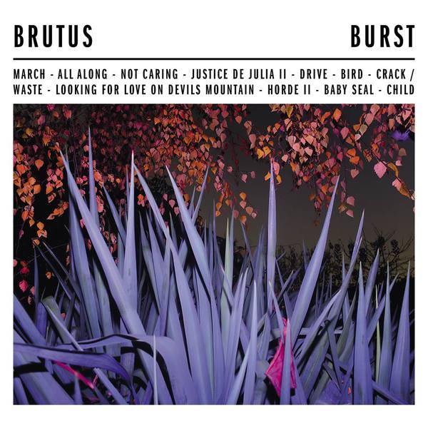 BRUTUS, burst cover