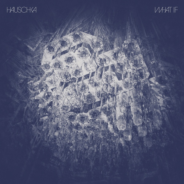 HAUSCHKA, what if cover
