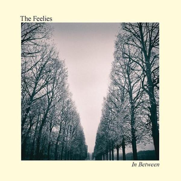 Cover FEELIES, in between