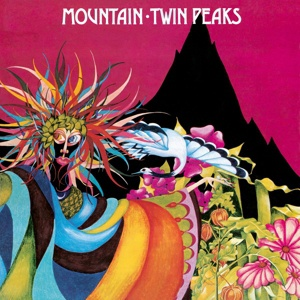 Cover MOUNTAIN, twin peaks